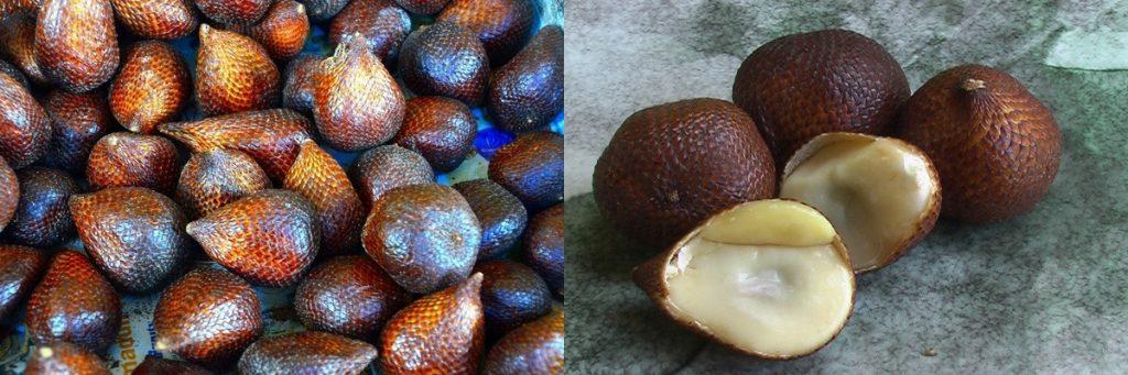 фрукт салак